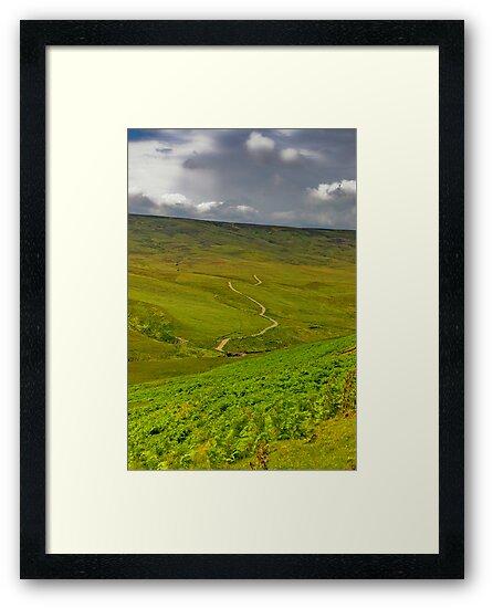 The Long Winding Road by Trevor Kersley