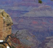 Grand Canyon 14  Sticker