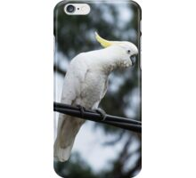 Cockatoo on a wire iPhone Case/Skin