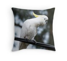 Cockatoo on a wire Throw Pillow