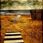 Pathway to the sea II by Silvia Ganora