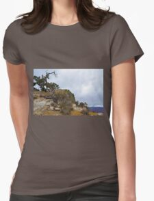 Grand Canyon 16 Womens Fitted T-Shirt