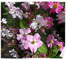 Brush Roses, petals and buds wall art home decor Poster