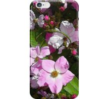 Brush Roses, petals and buds wall art home decor iPhone Case/Skin