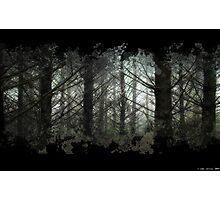 God's Green Earth Photographic Print