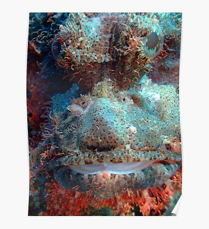 Smallscale Scorpionfish Poster