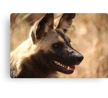 Wild Dog - South Africa Canvas Print