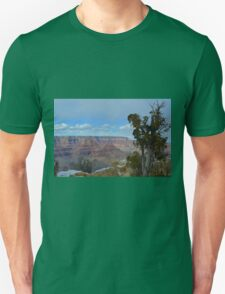 Grand Canyon 17 T-Shirt
