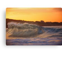 If Only Waves Were People Canvas Print