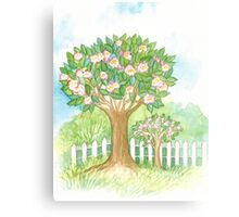 SPRING BLOOMING APPLETREES BEHIND A WHITE FENCE  Canvas Print