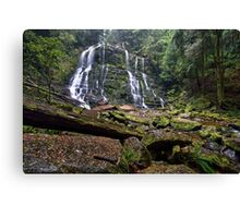 Nelson Falls - Tasmania Canvas Print