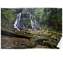 Nelson Falls - Tasmania Poster