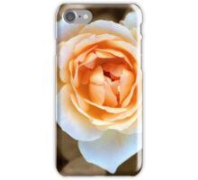 """Smooth Angel"" Rose iPhone Case/Skin"