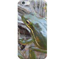 Green Tree Frog iPhone Case/Skin