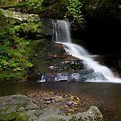 Catawba falls (Lower) by Forrest Tainio