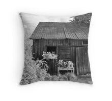 Bucolic place Throw Pillow