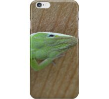 Green Anole iPhone Case/Skin