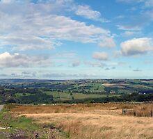 North Yorkshire Moors by Chrispy1953
