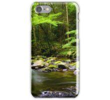 Smokey Mountain Stream  iPhone Case/Skin
