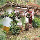 Country garden by Esperanza Gallego