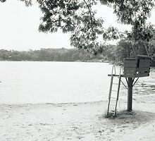 Lifeguard Stand by Sgaugs