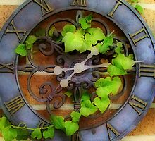 Ivy on Time by suzannem73