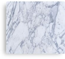 White And Gray Marble Stone Pattern Canvas Print