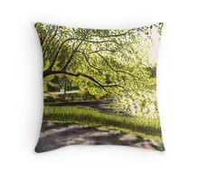 Djurgårdsbrunnsviken Throw Pillow