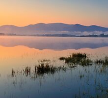 Lough Leane by Michael Walsh