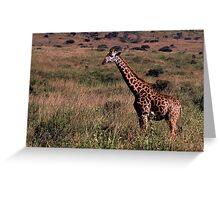 Kenyan Giraffe Greeting Card