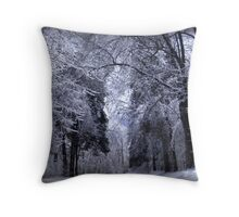 Winter in the Ozarks Throw Pillow