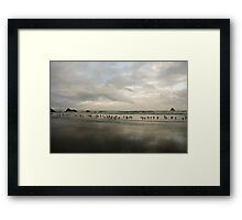 Birdy Beach Framed Print