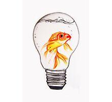 Fish Bulb Drawing Photographic Print