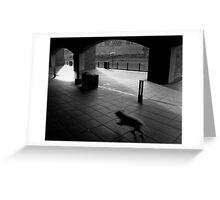 Sly Dog Greeting Card
