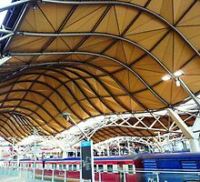 Southern Cross Railway Station by Deirdreb