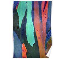 Caribbean Bark Serie #3 Poster