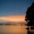 Kauri point at night by Paul Mercer