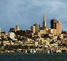 San Francisco Skyline by pat gamwell