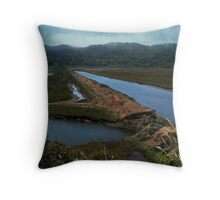 The Levy Throw Pillow