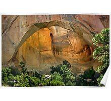 La Ventana Natural Arch Poster