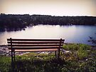 open bench by schizomania