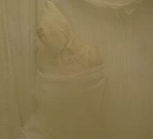 The White Room by John Douglas