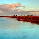 Swan Bay by RichardIsik