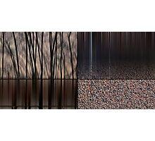 Walls Photographic Print