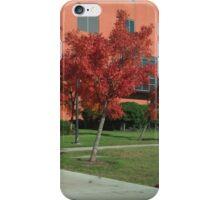 Third in Fall iPhone Case/Skin