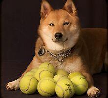 Got Balls? by Roberta Parsons
