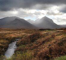 Cullins- Skye by Mabel Forsyth
