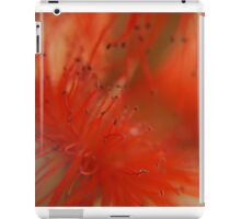 a haze of red before my eyes... iPad Case/Skin
