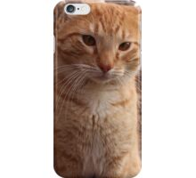 Beautiful Magestic Orange Cat with leaves behind iPhone Case/Skin