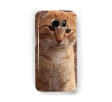 Beautiful Magestic Orange Cat with leaves behind Samsung Galaxy Case/Skin